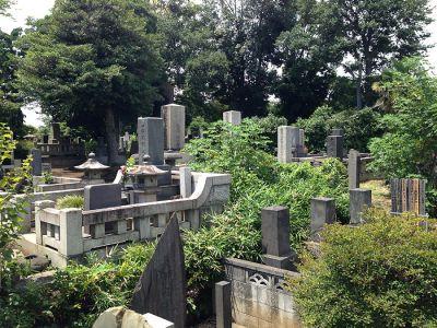 Graveyard-36